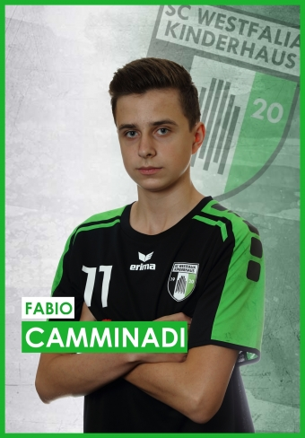 Fabio Camminadi